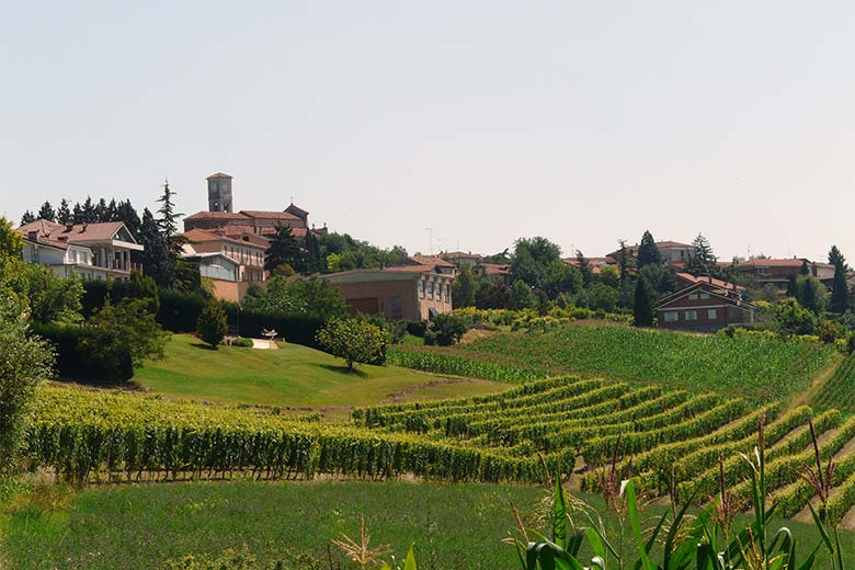 The hills and vineyards of Monferrato, photo credits Davide Papalini under c.c 3.0 licence